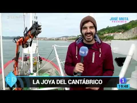 Elaboración de anchoas de Santoña | Conservas Consorcio
