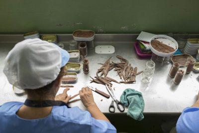 Limpieza de las anchoas de Santoña una a una