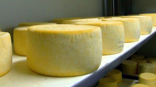 Comprar quesos de vaca gourmet online a domicilio